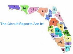 Circuit Reports