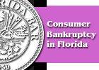 Pamphlet Consum er Bankruptcy Florida