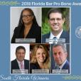 The 2018 Pro Bono Awards are here!
