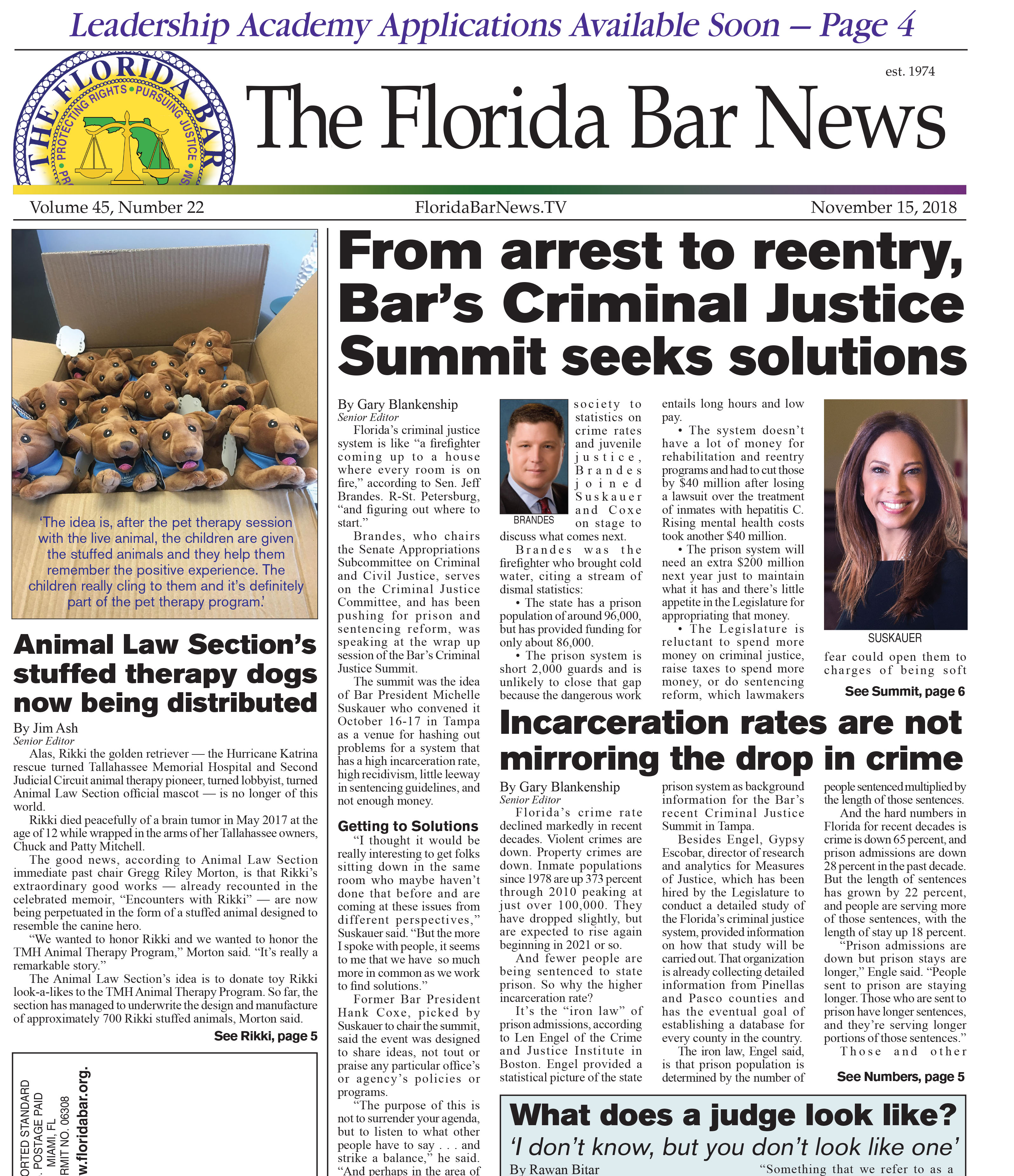 The Nov. 15 Bar News with stories including Criminal Justice Summit wrap-up, Animal Law Section's toy therapy dog project, and YLD's Disaster Relief Hotline needs volunteers.