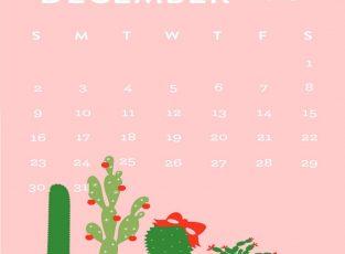 SO - Dec. dates