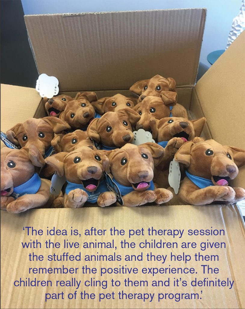 Animal Law Sections stuffed therapy dogs now being distributed