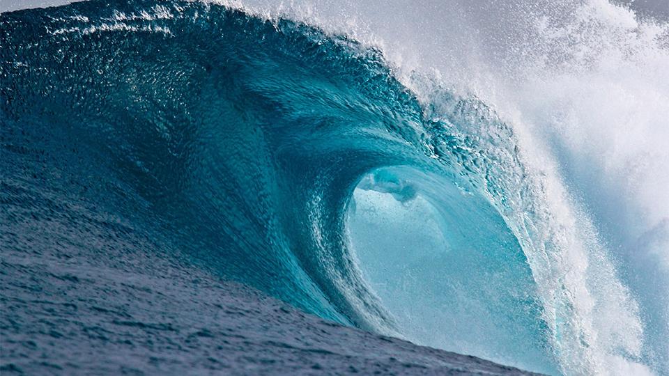 Navigating Florida's Changing Daubert Tide in Business Cases