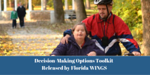 Decision-making-option-toolkit