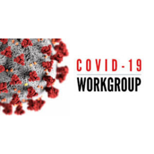Court's COVID-19 workgroup formulates current and future solutions