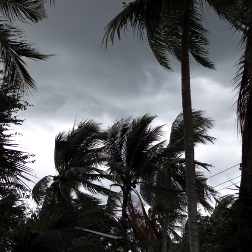 THE THREE P'S OF DISASTER PREPAREDNESS HOW LEGAL ISSUES ARE CRITICAL DURING HURRICANE SEASON