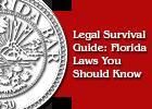Legal Survival Guide Pamphlet