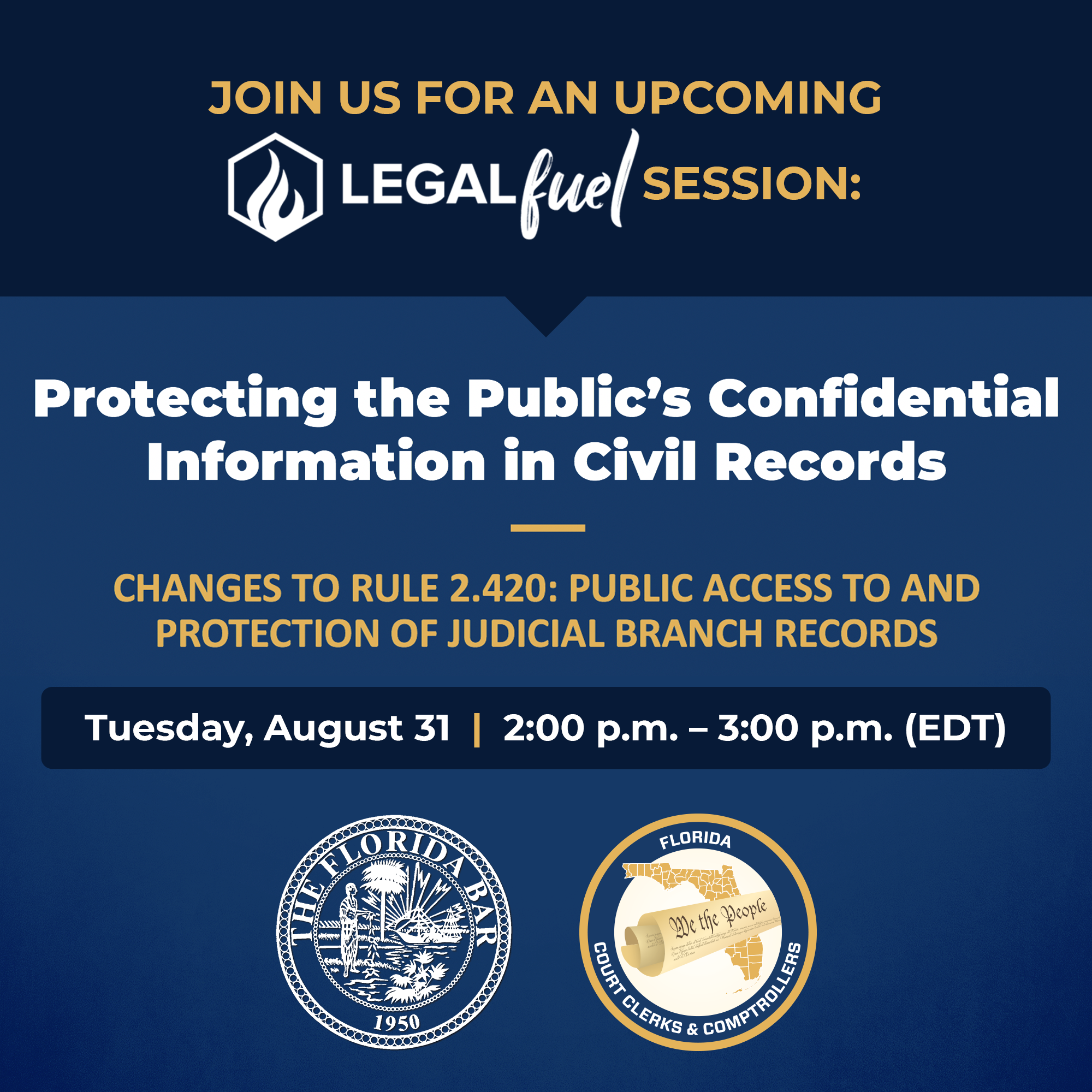 Protecting the Public's Confidential Information in Civil Records flyer