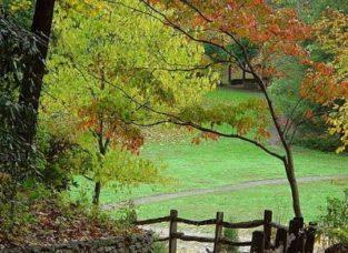 Fall in Asheville North Carolina